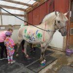 technicolor horse